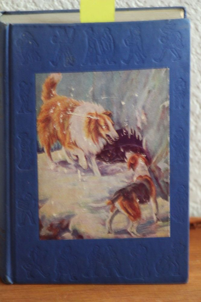 Dog Stories Every Child Should Know. Albert Payson Terhune.